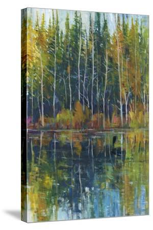Pine Reflection I-Tim OToole-Stretched Canvas Print