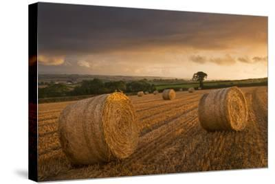 Hay Bales in a Ploughed Field at Sunset, Eastington, Devon, England. Summer (August)-Adam Burton-Stretched Canvas Print