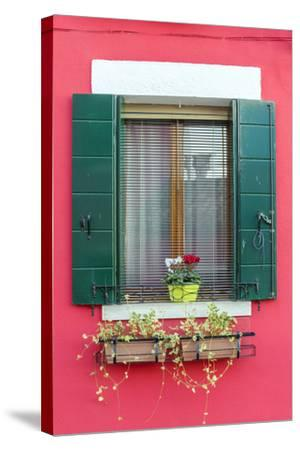 Italy, Veneto, Venice, Burano. Typical Window on a Colorful House-Matteo Colombo-Stretched Canvas Print