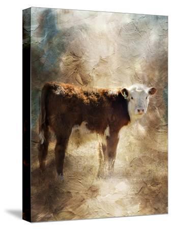 Calf in the Sunday Sun-Jai Johnson-Stretched Canvas Print