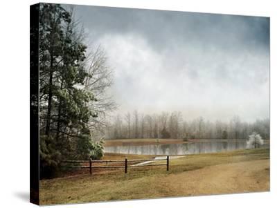 Frostbitten-Jai Johnson-Stretched Canvas Print