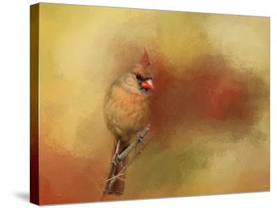 Backyard Jewel-Jai Johnson-Stretched Canvas Print