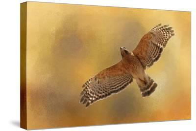 Raptors Afternoon Flight-Jai Johnson-Stretched Canvas Print