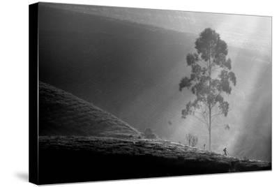 Itself on a Long Journey-Saelanwangsa-Stretched Canvas Print