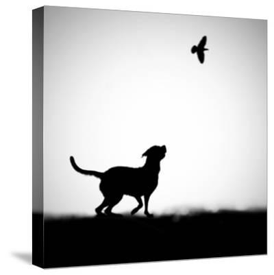 The Clue-Hengki Lee-Stretched Canvas Print