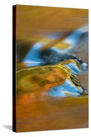 USA, Michigan, Upper Peninsula. Bond Falls Reflections in Fall-Jaynes Gallery-Stretched Canvas Print