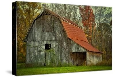 USA, Indiana. Rural Landscape, Vine Covered Barn with Red Roof-Rona Schwarz-Stretched Canvas Print