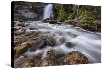 Baring Falls in Glacier National Park, Montana, USA-Chuck Haney-Stretched Canvas Print