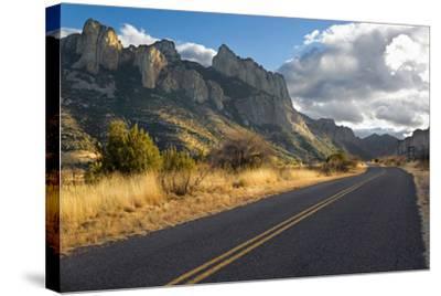 Road to Portal, Arizona-Susan Degginger-Stretched Canvas Print