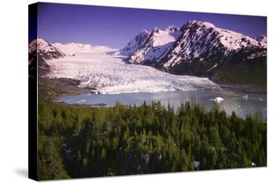 Aerial of Spencer Glacier Kenai Mountains Chugach National Forest Southcentral Alaska Summer-Design Pics Inc-Stretched Canvas Print