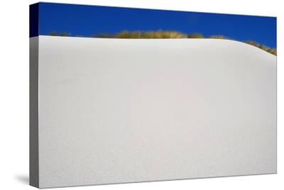 Sand Dune-Design Pics Inc-Stretched Canvas Print