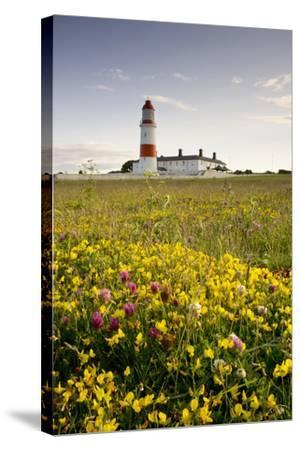 Souter Lighthouse; South Shields Marsden South Tyneside Tyne and Wear England-Design Pics Inc-Stretched Canvas Print