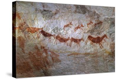 Rock Art on a Rock Wall in the Cederberg Wilderness Area, South Africa-Keith Ladzinski-Stretched Canvas Print