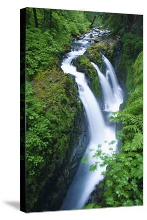 View of Sol Duc Falls in Olympic National Park, Washington-Keith Ladzinski-Stretched Canvas Print