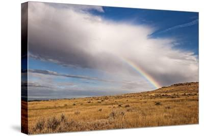 A Thunderstorm Produces a Vivid Rainbow-Jim Reed-Stretched Canvas Print