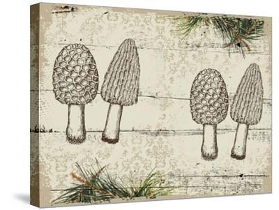 Woodland mushrooms--Stretched Canvas Print