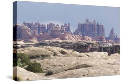 The Needles Rock Formation-DLILLC-Stretched Canvas Print