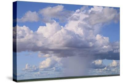 Cumulus Clouds Forming a Rainstorm-DLILLC-Stretched Canvas Print