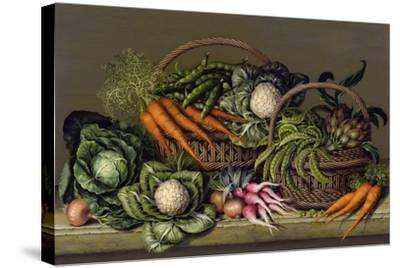 Basket of Vegetables and Radishes, 1995-Amelia Kleiser-Stretched Canvas Print