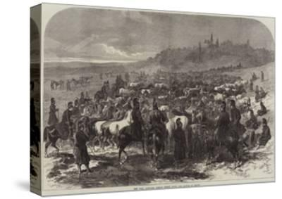 The War, Captured French Horses after the Battle of Sedan-Arthur Hopkins-Stretched Canvas Print