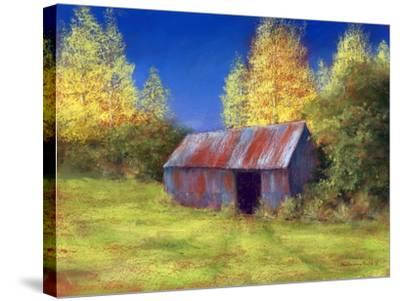 The Old Tin Shack, 2010-Anthony Rule-Stretched Canvas Print