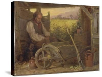 The Old Gardener, 1863-Briton Riviere-Stretched Canvas Print