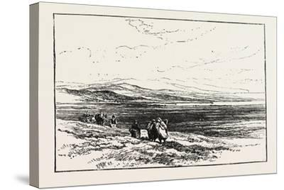 A Scotch Moor-Edmund Morison Wimperis-Stretched Canvas Print
