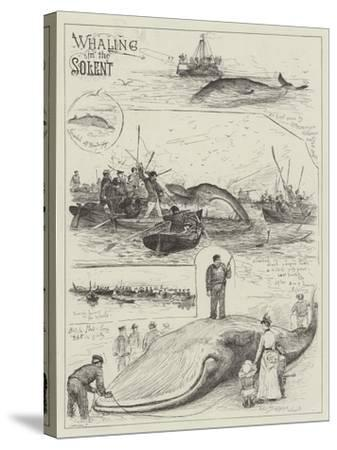 Whaling in the Solent-Henry Charles Seppings Wright-Stretched Canvas Print