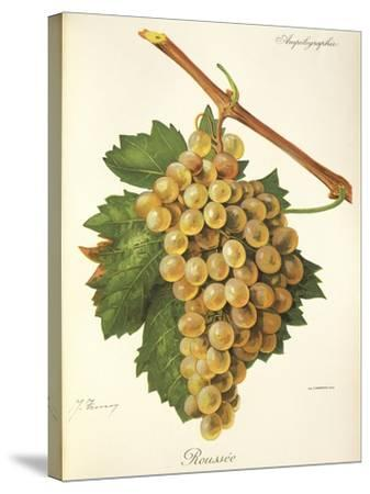 Roussee Grape-J. Troncy-Stretched Canvas Print