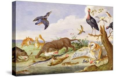 An Otter and an Owl Guarding their Catches-Jan van Kessel the Elder-Stretched Canvas Print