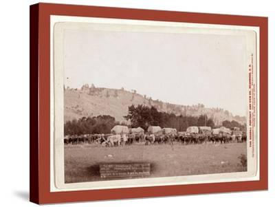 Freighting in the Black Hills. Photographed Between Sturgis and Deadwood-John C. H. Grabill-Stretched Canvas Print