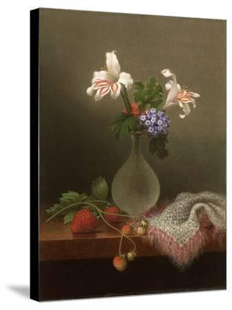 A Vase of Corn Lilies and Heliotrope, 1863-Martin Johnson Heade-Stretched Canvas Print