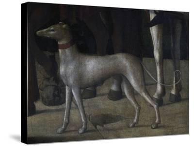 Dog-Michelle da Verona-Stretched Canvas Print