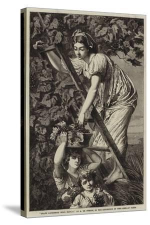 Grape Gathering Near Naples-Paul Alfred De Curzon-Stretched Canvas Print