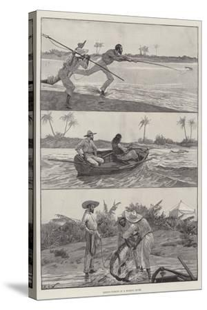 Tarpon-Fishing in a Florida River-Richard Caton Woodville II-Stretched Canvas Print