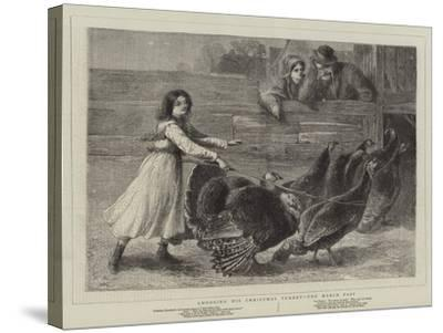 Choosing His Christmas Turkey, the March Past-Samuel Edmund Waller-Stretched Canvas Print