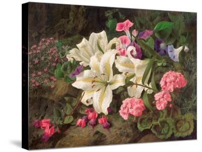 Golden-Rayed Lily of Japan, 1869-William Ford-Stretched Canvas Print