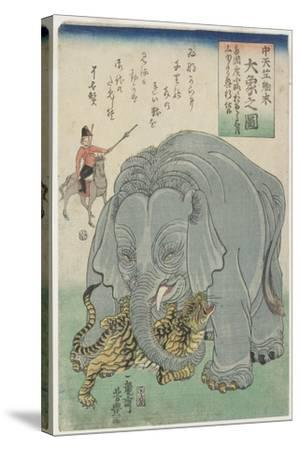 Elephant from India with Tiger, February 1863- Yoshitoyo-Stretched Canvas Print