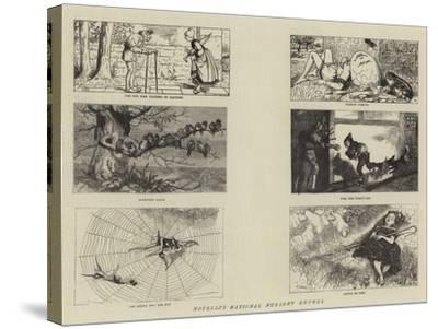 Novello's National Nursery Rhymes-William Small-Stretched Canvas Print