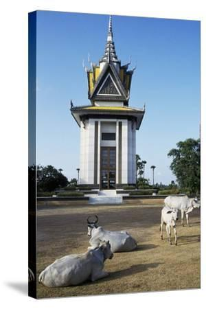 Cattle in Front of Choeung Ek--Stretched Canvas Print
