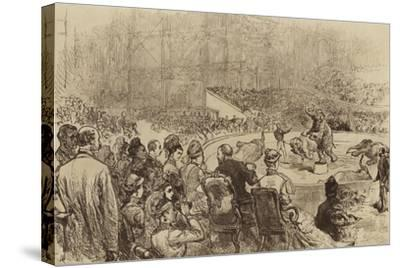 Visit of the Prince and Princess of Wales and the King and Queen of Greece, 1876--Stretched Canvas Print