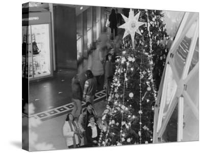 A Tree Topped with a Large Star on Display During the Christmas around the World Exhibit--Stretched Canvas Print