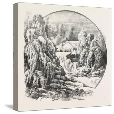 Ice Grove, Canada, Nineteenth Century--Stretched Canvas Print