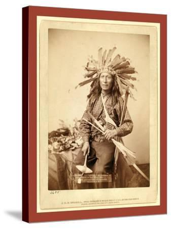 Little, the Instigator of Indian Revolt at Pine Ridge, 1890--Stretched Canvas Print