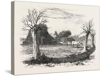 Whittlesea Mere, Carting Peat from the Stack, UK, 1851--Stretched Canvas Print