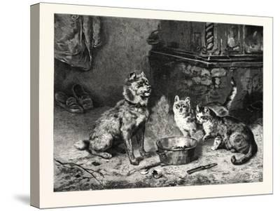 Patience, Dog and Cats Dinner--Stretched Canvas Print