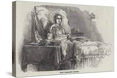 Mary Elizabeth Squirrel--Stretched Canvas Print