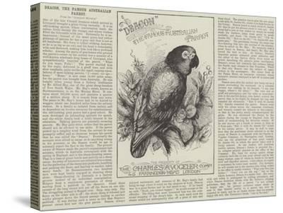 Advertisement, Deacon, the Famous Australian Parrot--Stretched Canvas Print