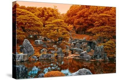 Fall Colors at the Pond of the Ninomaru Garden-Kike Calvo-Stretched Canvas Print