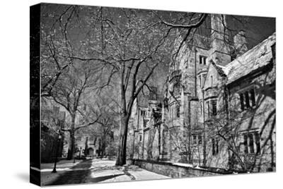 Winter Blizzard at Yale University-Kike Calvo-Stretched Canvas Print